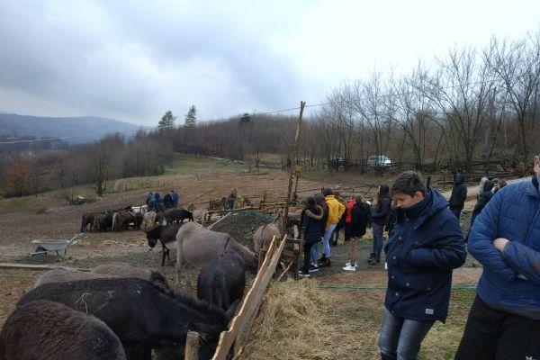 Mladi Žepča i Begovog Hana posjetili farme, vinariju i vjerske objekte